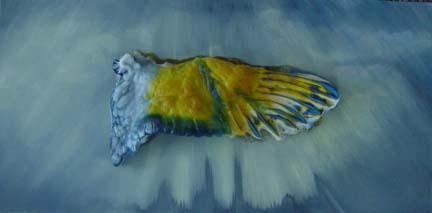Tarsitano wing